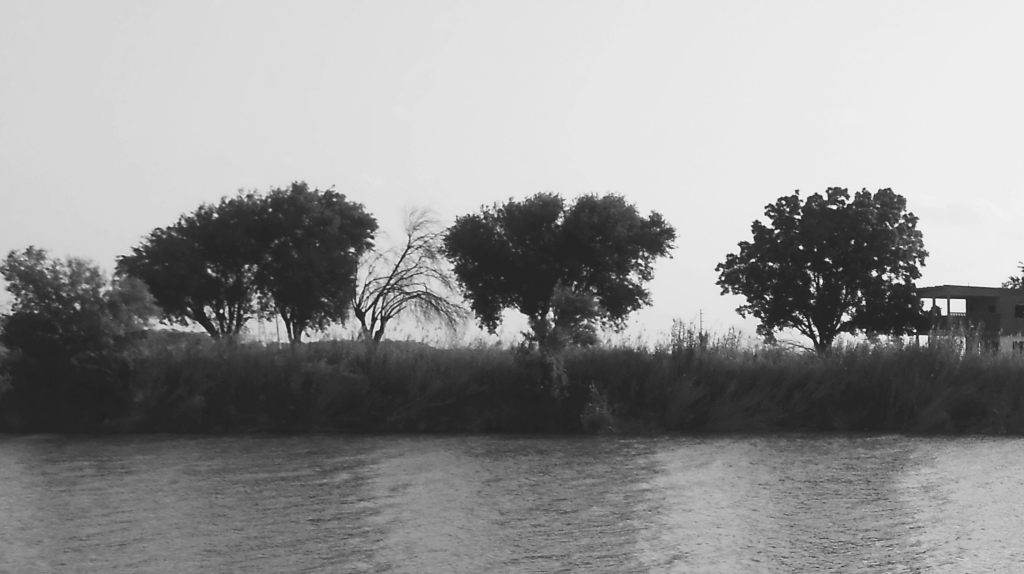 Thousands of Central Americans have crossed the Rio Grande River this year, shown here last spring near Brownsville, Texas, and surrendered to Border Patrol in hopes of finding asylum in the United States. Photo by Paula Miller.