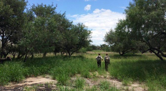 NMM ayuda a incrementar la ayuda humanitaria en el sur de Texas